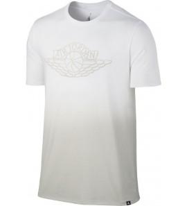 Air Jordan Fadeaway Faded 843138-101