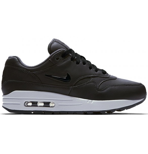 Nike Wmns Air Max 1 Premium SC Aa0512-003